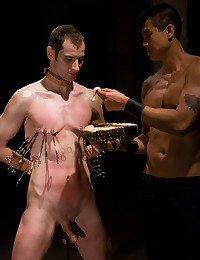 Nipple clamps for submissive