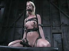 Kelly Wells - Device Bondage