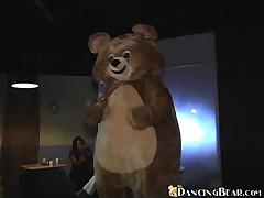 Dancing Bear - Crazy Shit