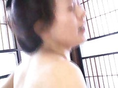 Asian babes get their pussies filled in orgy