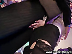 Pornstars blending into office party